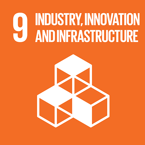 9. Build resilient infrastructure, promote sustainable industrialization and foster innovation